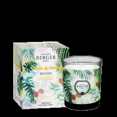 Bougie Parfumée Immersion Litchi Paradis
